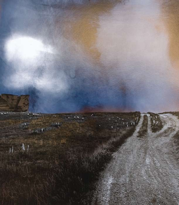 Untitled Landscape II, 1995 Silver chloride monoprint, selectively fogged and toned 19 x 15 in. Newport Art Museum Gift of Dr. Joseph A. Chazan